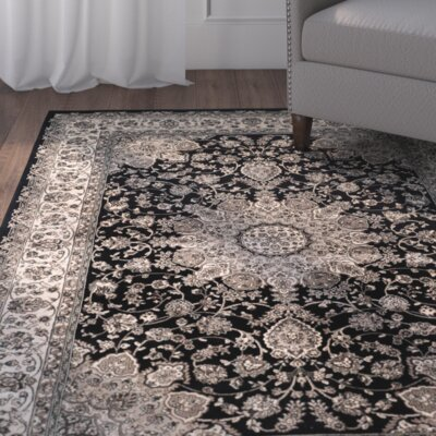 Petronella Black & Ivory Area Rug Rug Size: Rectangle 4 x 57