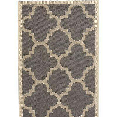 Alderman Grey/Beige Indoor/Outdoor Area Rug Rug Size: 53 x 77