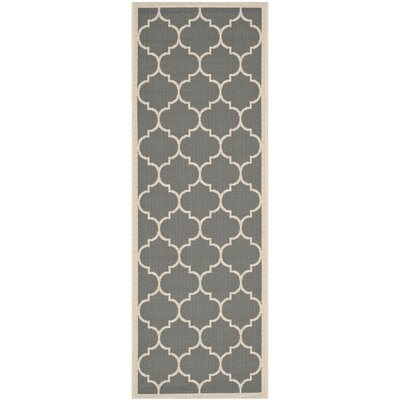 Alderman Anthracite/Beige Outdoor/Indoor Area Rug Rug Size: Runner 27 x 5