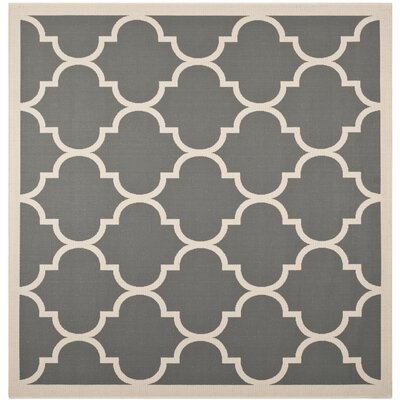 Octavius Anthracite/Beige Indoor/Outdoor Area Rug Rug Size: Square 53