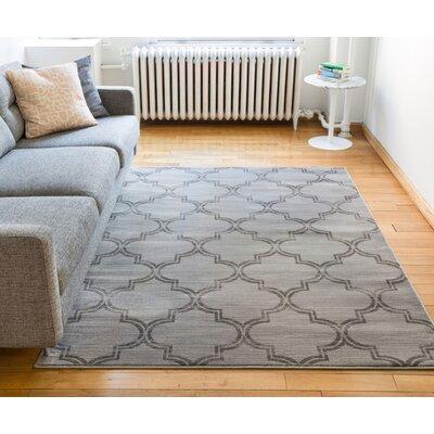 Abramowitz Gray Area Rug Rug Size: 710 x 910