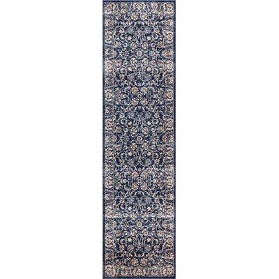 Abramowitz Blue Area Rug Rug Size: Runner 27 x 910