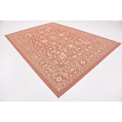Anton Terracotta Outdoor Area Rug Rug Size: 8 x 114