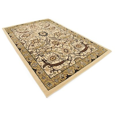 Antoinette Ivory Area Rug Rug Size: Rectangle 6' x 9'