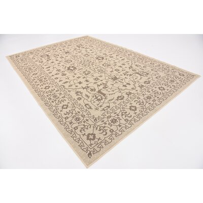 Apache Beige Outdoor Area Rug Rug Size: Rectangle 7 x 10