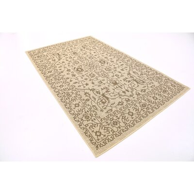 Apache Beige Outdoor Area Rug Rug Size: Rectangle 5 x 8
