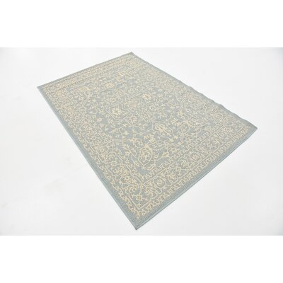 Apollo Light Blue Outdoor Area Rug Rug Size: Rectangle 4 x 6