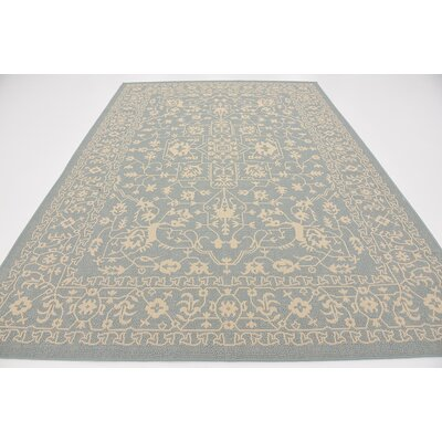 Apollo Light Blue Outdoor Area Rug Rug Size: 7 x 10