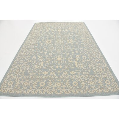 Apollo Light Blue Outdoor Area Rug Rug Size: 6 x 9