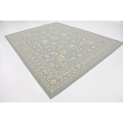 Apollo Light Blue Outdoor Area Rug Rug Size: Rectangle 9 x 12
