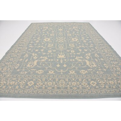 Apollo Light Blue Outdoor Area Rug Rug Size: 9 x 12