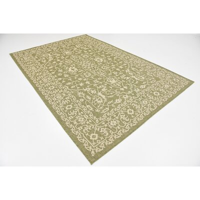 Applecrest Green Outdoor Area Rug Rug Size: 6 x 9