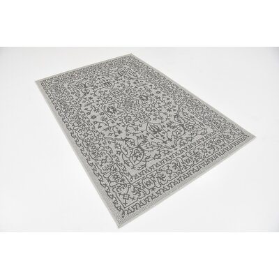 Appletree Light Gray Outdoor Area Rug Rug Size: 4 x 6