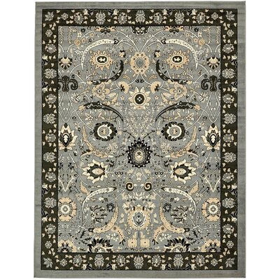 Britannia Dark Gray Area Rug Rug Size: Rectangle 9 x 12