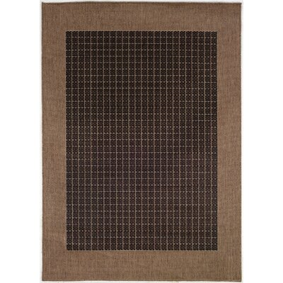 Ariadne Checkered Field Black/Cocoa Indoor/Outdoor Area Rug Rug Size: 53 x 76