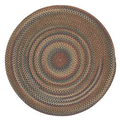 Gaylord Olive Area Rug Rug Size: Round 8
