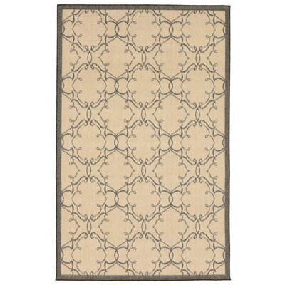 Brasstown Delicate Scroll Beige Indoor/Outdoor Area Rug Rug Size: 111 x 211