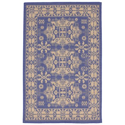 Brasstown Blue Indoor/Outdoor Area Rug Rug Size: 111 x 211