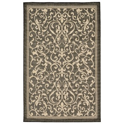 Brasstown Brown Indoor/Outdoor Area Rug Rug Size: 410 x 76