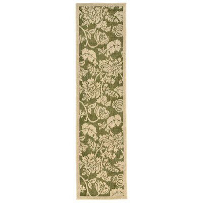 Brasstown Green Indoor/Outdoor Area Rug Rug Size: Runner 111 x 76