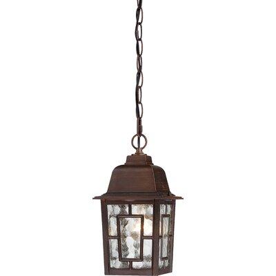 Timmons 1-Light Outdoor Hanging Lantern