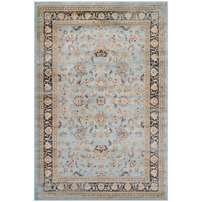 Connors Farahan Amulet Light Blue/Black Area Rug Rug Size: 31 x 56