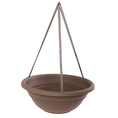 Coleshill Plastic Hanging Planter Color: Chocolate