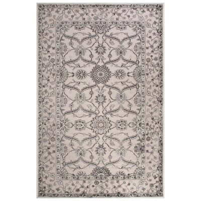 Ada Ivory/Gray Area Rug Rug Size: 2 x 3