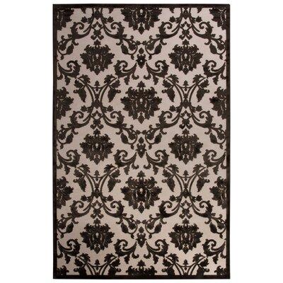 Ada Ivory/Black Area Rug Rug Size: 5 x 76