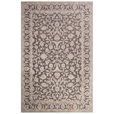Ada Gray Area Rug Rug Size: Rectangle 5 x 76