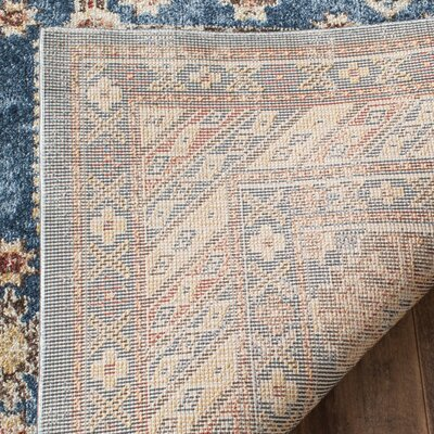 Isanotski Brown/Blue Area Rug Rug Size: Rectangle 9 x 12