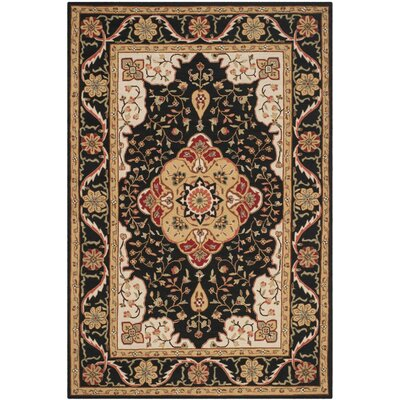 Bryonhall Hand Hooked Area Rug Rug Size: Rectangle 6 x 9