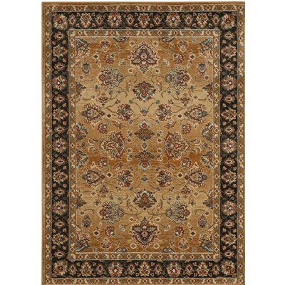 Lowe Beige/Brown Area Rug Rug Size: Rectangle 51 x 76