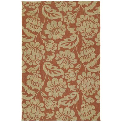 Glenn Copper Red Floral  Indoor/Outdoor Area Rug Rug Size: Rectangle 9 x 12