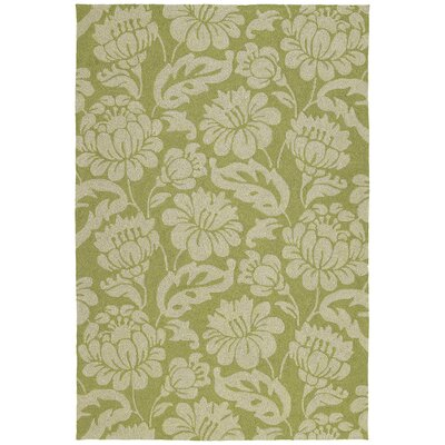 Glenn Wasabi Floral Indoor/Outdoor Area Rug Rug Size: Rectangle 9 x 12