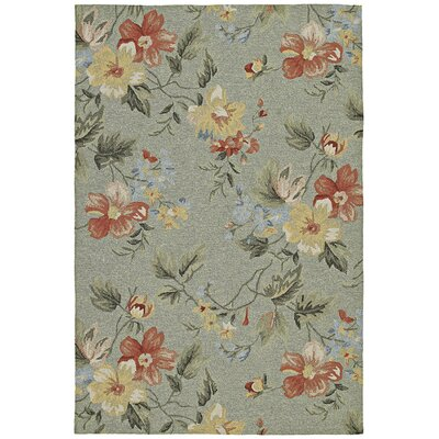Manning Indoor/Outdoor Area Rug Rug Size: Rectangle 5 x 76