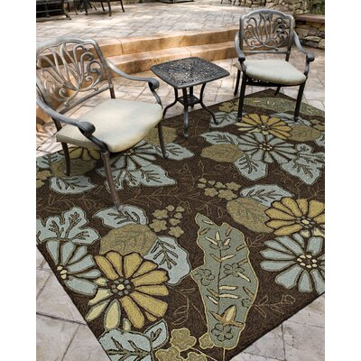 Manning Morning Glory Robins Egg Indoor/Outdoor Area Rug Rug Size: Round 79