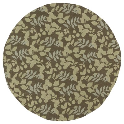 Manning Coffee Indoor/Outdoor Area Rug Rug Size: Round 59