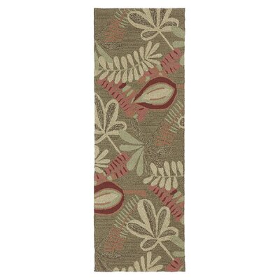 Manning Coffee Indoor/Outdoor Area Rug Rug Size: Runner 2 x 6