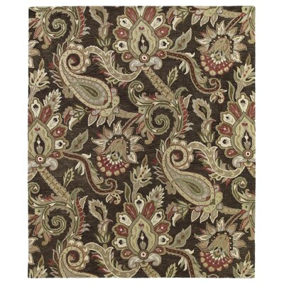 Casper Chocolate Odyusseus Brown/Tan Floral Area Rug Rug Size: Rectangle 9 x 12