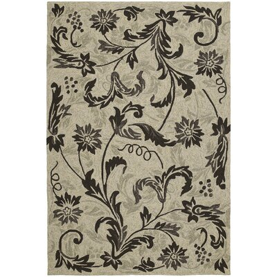 Manning Brown & Tan Floral Indoor/Outdoor Area Rug Rug Size: Rectangle 5 x 76
