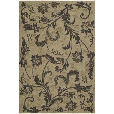 Manning Mocha Floral Indoor/Outdoor Area Rug Rug Size: Rectangle 76 x 9