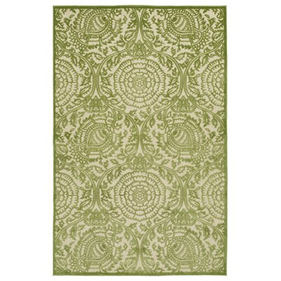 Covedale Hand-Woven Green Indoor/Outdoor Area Rug Rug Size: 5 x 76