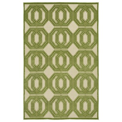 Covedale Green/Cream Indoor/Outdoor Area Rug Rug Size: Runner 26 x 71