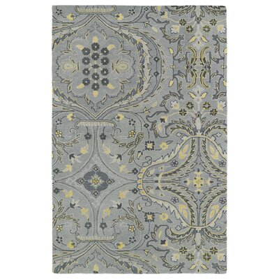 Casper Gray Area Rug Rug Size: Rectangle 4 x 6
