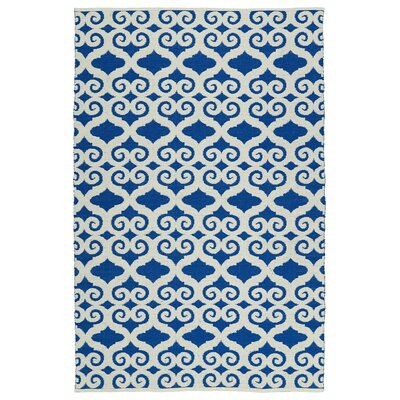 Covington White/Navy Indoor/Outdoor Area Rug Rug Size: 9' x 12'