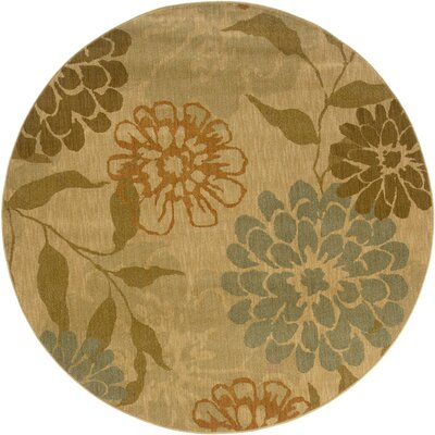 Crossreagh Beige/Green Area Rug Rug Size: Round 78