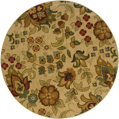 Crossreagh Beige/ Green Area Rug Rug Size: 53 x 76