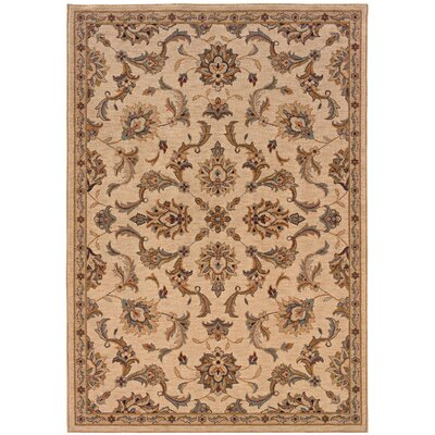 Cullman Ivory/Gold Area Rug Rug Size: Rectangle 53 x 76