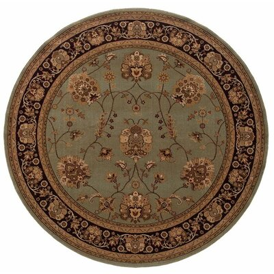 Currahee Area Rug Rug Size: Round 710